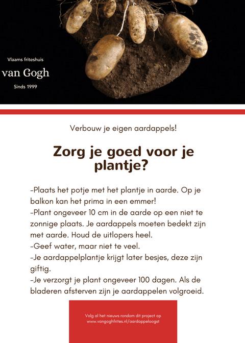 aardappeloogst van Gogh frites Amersfoort